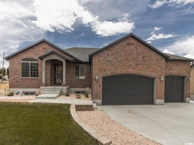 Tooele Single Family Home For Sale: 265 S Droubay Rd