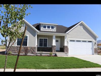 Spanish Fork Single Family Home For Sale: 2125 E 700 N