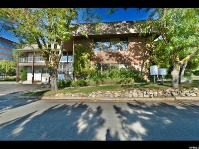 Ogden Commercial For Sale: 1117 County Hills Dr
