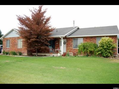Alpine Single Family Home For Sale: 264 W Sunset Dr