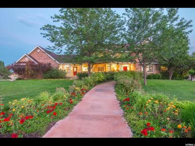 Lehi Single Family Home For Sale: 3015 W Crooked Stick Dr