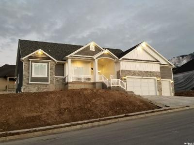Salem Single Family Home For Sale: 1043 S 900 E