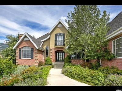 Alpine Single Family Home For Sale: 1593 Rosanna Ln