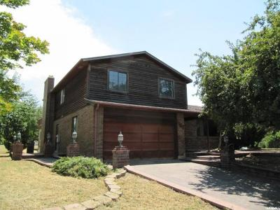 Stansbury Park Single Family Home For Sale: 452 Country Club