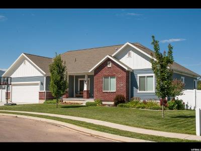 Salem Single Family Home For Sale: 1 S 800 E