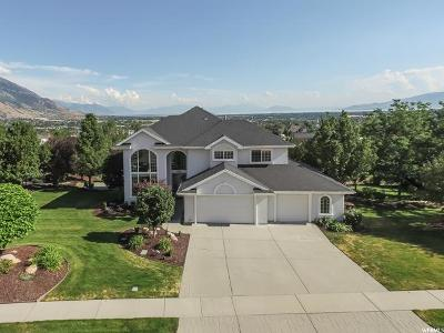 Alpine Single Family Home For Sale: 795 W 600 N