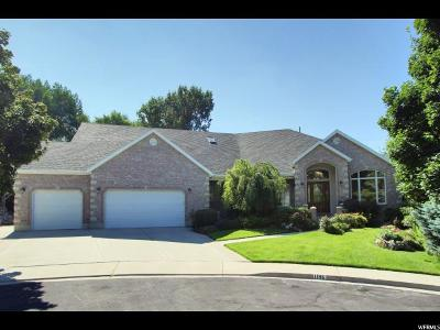 Orem Single Family Home For Sale: 1196 E 1220 N