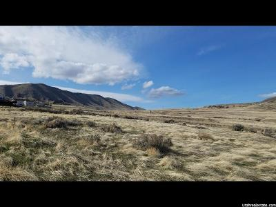 Thatcher UT Residential Lots & Land For Sale: $24,900