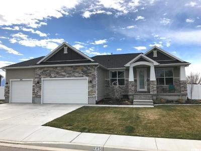 Pleasant Grove Single Family Home For Sale: 885 W 1650 N
