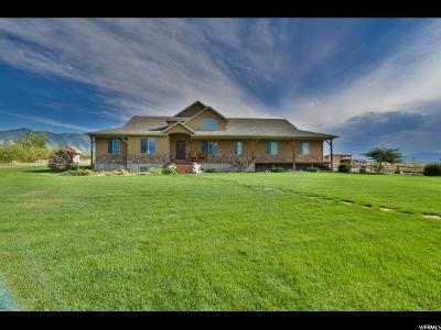 Erda Single Family Home For Sale: 908 E Wendell Ct