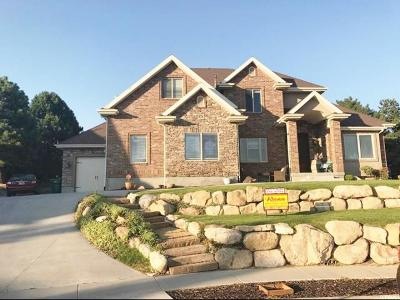 Lehi Single Family Home For Sale: 976 W Wade Circle N