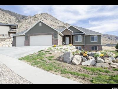 Brigham City Single Family Home For Sale: 1465 N Kotter Dr. E