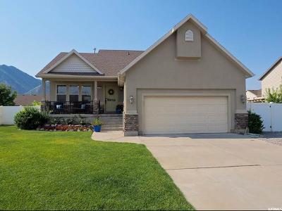 Spanish Fork Single Family Home For Sale: 2478 E 1580 S