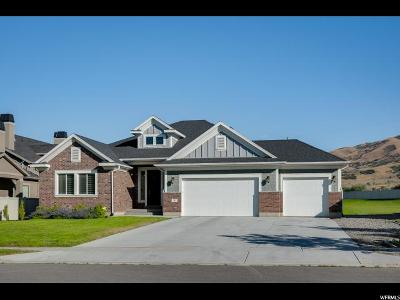 Lehi Single Family Home For Sale: 343 E Clubview Ln