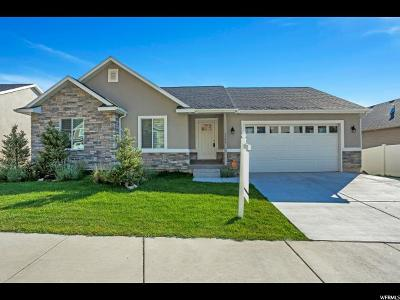 Provo Single Family Home For Sale: 2332 S Alaska Ave #8