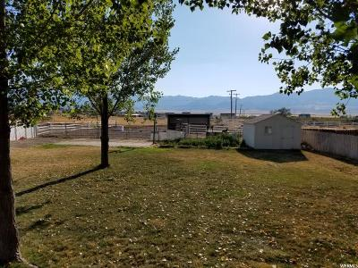 Grantsville Single Family Home For Sale: 958 S Ruben Ct N