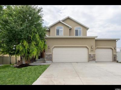 Saratoga Springs Single Family Home For Sale: 177 W Hillside Dr.