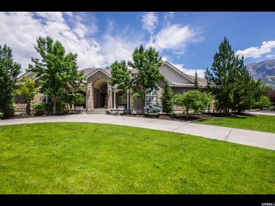 Provo Single Family Home For Sale: 4298 N Vintage Dr