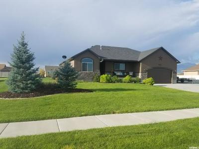 Grantsville Single Family Home For Sale: 824 E Deep Wash Rd S