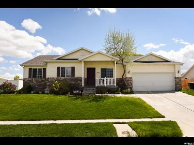 West Valley City Single Family Home For Sale: 7133 W Hawker Ln S