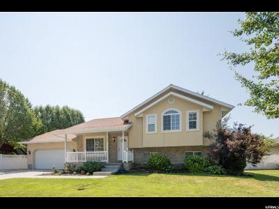 Orem Single Family Home For Sale: 25 W 990 N