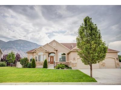 American Fork Single Family Home For Sale: 778 N 1300 E