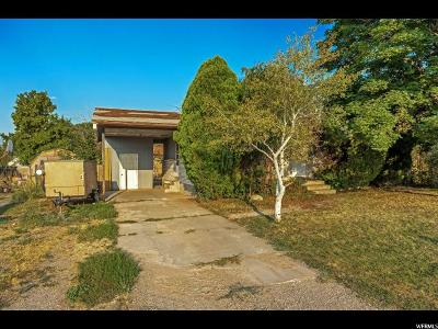 Payson Single Family Home For Sale: 492 N 200 W