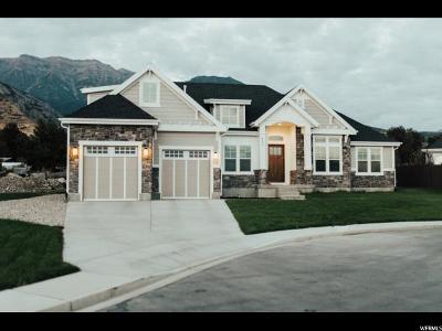 Pleasant Grove Single Family Home For Sale: 653 S 900 E