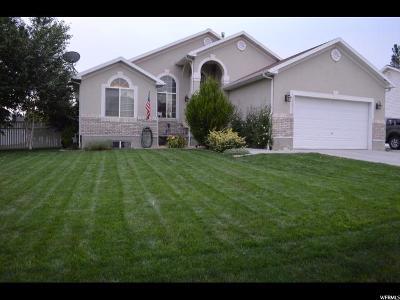 Grantsville Single Family Home For Sale: 372 Angus Cv