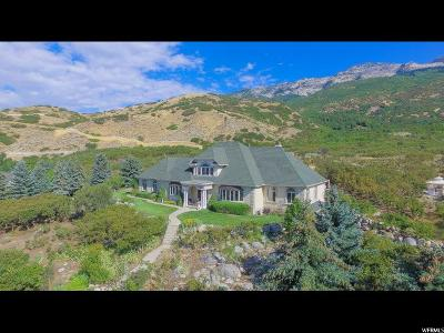 Alpine Single Family Home For Sale: 4256 Alpine Cove Dr