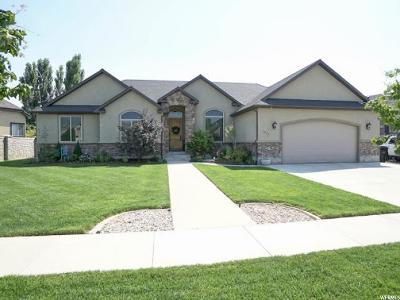 Spanish Fork Single Family Home For Sale: 1069 W Riverhill Dr S
