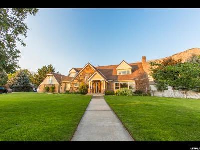 Provo Single Family Home For Sale: 1063 E Dover Dr
