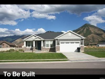 Spanish Fork Single Family Home For Sale: 16 N 2810 E #7