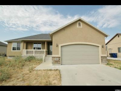 West Valley City Single Family Home For Sale: 2924 S Broad Creek Dr