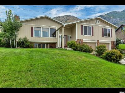 Provo Single Family Home For Sale: 4088 N Foothill Dr E