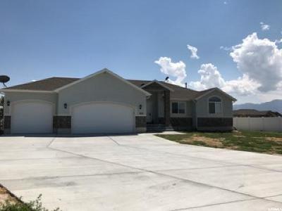 Grantsville Single Family Home For Sale: 802 E Saddle Ranch Cir S