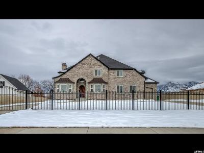 Orem Single Family Home For Sale: 317 S 760 St W