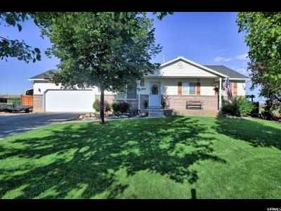 Santaquin Single Family Home For Sale: 565 N Orchard Dr