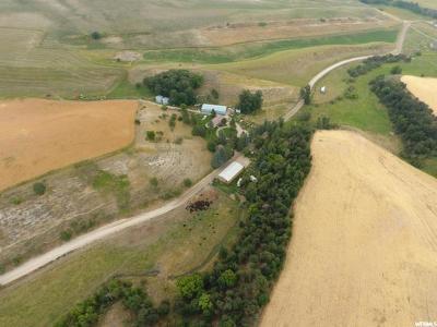 Franklin County Farm For Sale: 5527 Glendale Rd