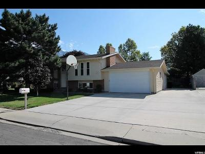 Orem Single Family Home For Sale: 1242 N 685 W