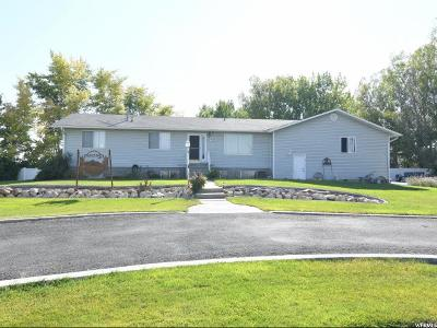 Tremonton Single Family Home For Sale: 794 N 2300 W