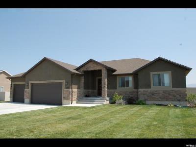 Grantsville Single Family Home For Sale: 553 S Gold Dust Rd E