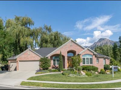 Holladay Single Family Home For Sale: 4337 S Butternut Rd E