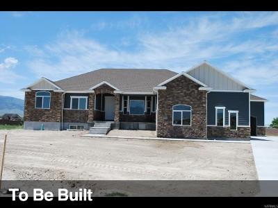 Grantsville Single Family Home For Sale: 675 S Gold Dust Rd E #740