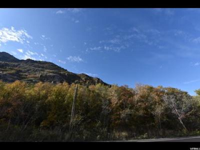 Sandy Residential Lots & Land For Sale: 4118 E Little Cottonwood Canyon Rd