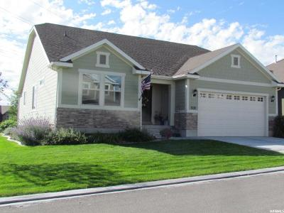 Saratoga Springs Single Family Home For Sale: 1539 S Lake View Terrace Rd W