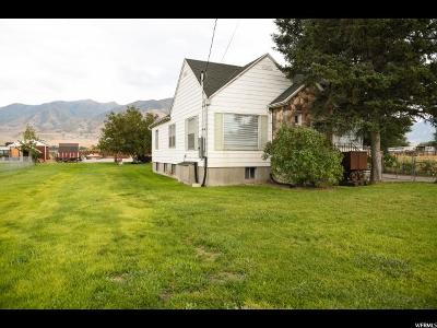 Erda Single Family Home For Sale: 4796 Highway 36