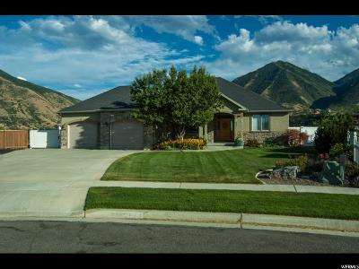Spanish Fork Single Family Home For Sale: 2976 E Canyon Crest Dr