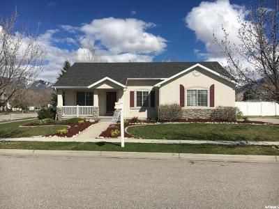 Tooele Single Family Home For Sale: 1944 N 270 W