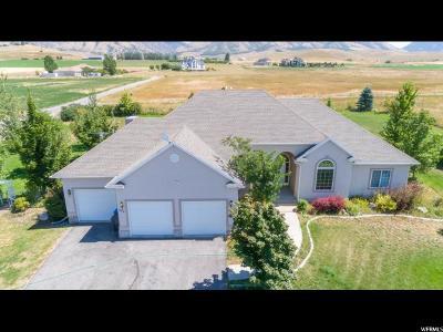 Cache County Single Family Home For Sale: 274 E 8800 S